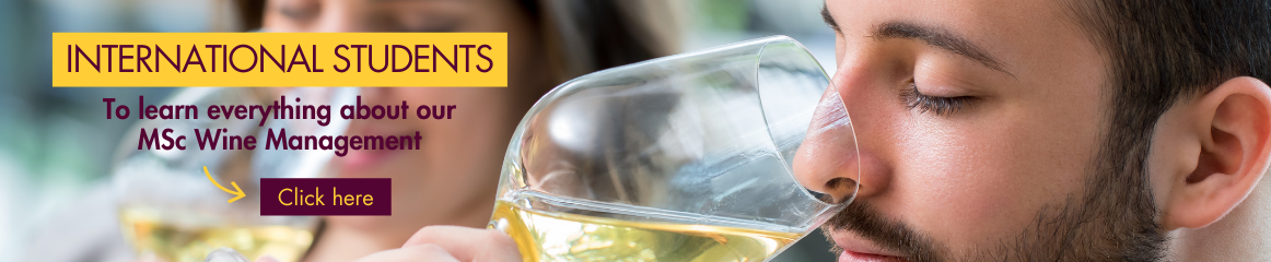 International Students, learn all about our MSc Wine Management